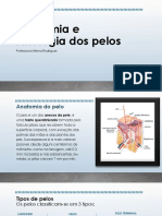 Anatomia e Fisiologia dos pelos.pptx
