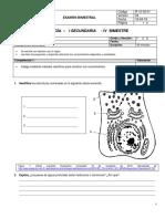 Examen Bimestral de Biologia i Año - IV Bimestre