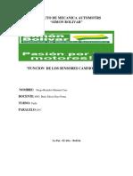 cammon rail doc.docx