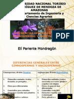 DENDROLOGIA I -  2 - 2019 (3).ppt