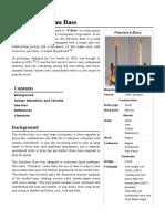 Fender_Precision_Bass (1).pdf