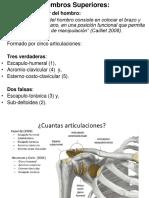 A. Funcional M. Superiores 2015
