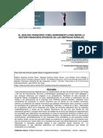 Analisis Financiero Empresas Rurales