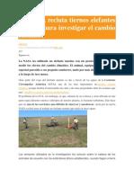La NASA Recluta Tiernos Elefantes Marinos Para Investigar El Cambio Climático