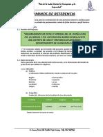 TDR INVIERTE.PE - PISTAS Y VEREDAS JR. OCOÑA,BRISAS BELLAVISTA.docx