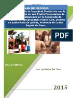 Plan_de_Negocio_MISKY_CUY2A (1)