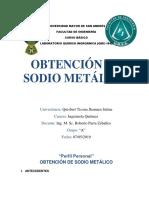 sodio metalico PERFIL.docx