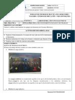 Guia-Estudiante Práctica 2.docx