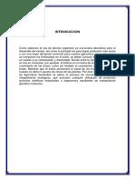ENSAYO DE ICA.docx