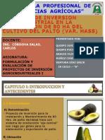 proyecto del cultivo de palto.pptx