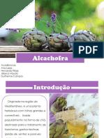 ALCACHOFRA_gnosia