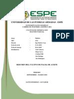 Resumen Suelos de Cultivos de Exportacion Palma