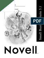 Resolução de Problemas do Servidor NetWare - Novell