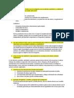 Preguntas MIP.docx