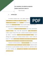 DDHH - Piovesan (1)