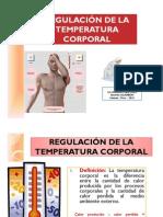 regulacion temperatura_ACanoM