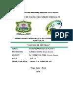 CULTIVO DE ANTERAS.doc