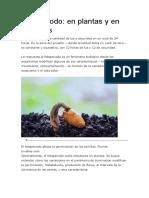 Fotoperiodo en Plantas y Anim Ales