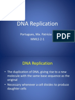 DNA Replication.pptx