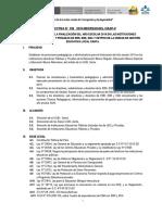 Directiva de finalizacion año escolar 2019