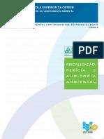 Apostila-Fiscalização-Perícia-e-Auditoria