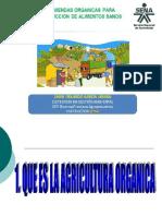 abonos organicos e impacto de los agroquimicos en la Agricultura.pdf