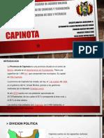 capinota