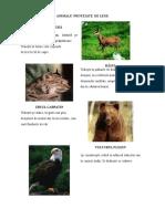 animalesiplanteprotejatedelege