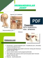 TMJ Anatomi