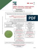 Aguas - P aeruginosa UNE EN ISO 16266-2008.pdf
