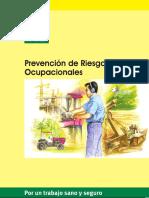 Prevencion de Riesgos Ocupacionales