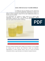generalidades gasto urinario.docx