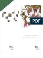 Plan Forestal Sintesis