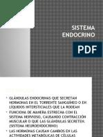 SISTEMA-ENDOCRINO.pptx