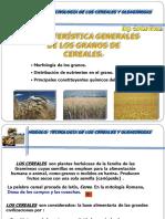 Características Generales de Los Granos de Cereales