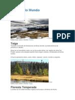 Biomas do Mundo 5 - Copia.docx