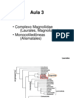 Magnoliidae-Alismatales