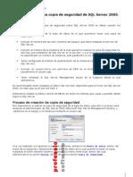 Copia de Seguridad de SQL Server 2005