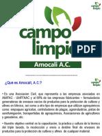 PLATICA CAMPO LIMPIO LUIS C..ppt