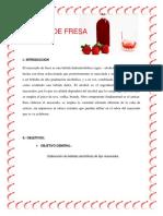 Informe Licor de Fresa