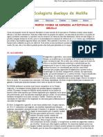 (Agro) Botanica Forestal - Crea Tu Propio Vivero