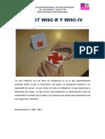 5. TEST DE WISC-R Y WISC-IV