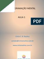 REPROGRAMAÇÃO MENTAL aula1