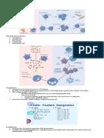 Diseases of Immunity2