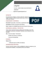 Curriculum-Vitae-sin-estudios