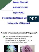 019 GMO.ppt