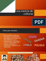 Ppt Chile Un País Mestizo 1