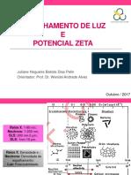 DLS e Potencial Zeta.pdf