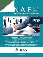 Cartilla DIAN-NAF - febrero 2019.pdf