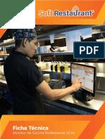 FICHA TECNICA MONITOR DE PRODUCCION PROFESSIONAL 9.5 (1)